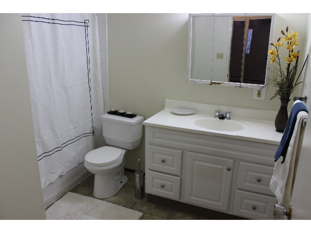 Large, open renovated bathroom with lots of storage.