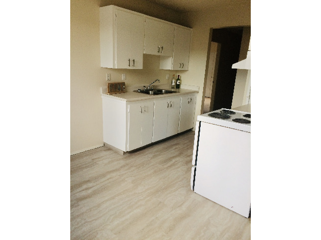 Brand new flooring in Kitchen & Dining room!